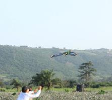 ARA drones